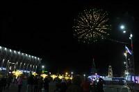 В Туле завершились новогодние гуляния, Фото: 38