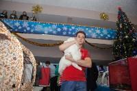 В Туле прошла выставка «Пряничные кошки» , Фото: 85