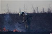 Сразу в нескольких районах Тульской области загорелись поля, Фото: 6