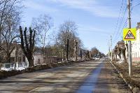 Кронирование деревьев в Туле: что можно, а чего нельзя?, Фото: 1