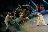 Цирк «Вива, Зорро!» в Туле , Фото: 87