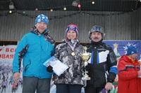 В Туле состоялась традиционная лыжная гонка , Фото: 167