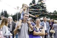 Праздник урожая в Новомосковске, Фото: 24