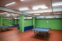 Как в Туле возрождают настольный теннис , Фото: 10