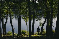 Летний день в богородицком парке, Фото: 41