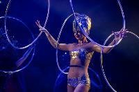 Шоу фонтанов «13 месяцев»: успей увидеть уникальную программу в Тульском цирке, Фото: 80