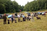 Выставка охотничьих собак под Тулой, Фото: 72