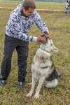 Международная выставка собак, Барсучок. 5.09.2015, Фото: 71