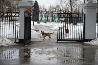 В Комсомольском парке прошёл рейд по выявлению собачников-нарушителей, Фото: 2