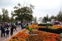 В Пролетарском округе Тулы начали праздновать День города, Фото: 14