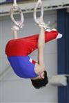 Первый этап Всероссийских соревнований по спортивной гимнастике среди юношей - «Надежды России»., Фото: 11