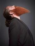 Чемпионат по бороде и усам в США, Фото: 2