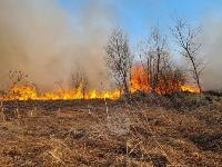 В Федоровке огонь с горящего поля едва не перекинулся на дома, Фото: 6