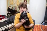 Всероссийская выставка собак 2017, Фото: 49