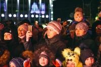 закрытие проекта Тула новогодняя столица России, Фото: 43