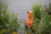 В Туле спасли лебедя с одним крылом, Фото: 23