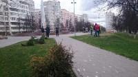 Высадка деревьев в Советском районе Тулы , Фото: 1