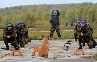 Оружейная Россия, 08.10.2015, Фото: 117