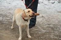 В Центральном парке прошёл рейд по выявлению нарушений выгула собак, Фото: 20