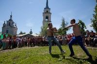 В Тульской области прошел фестиваль крапивы, Фото: 35