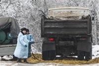 Визит Владимира Груздева в ПХ «Лазаревское», Фото: 6
