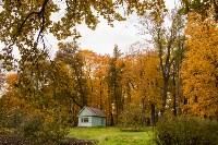 Золотая осень в Туле-2019, Фото: 28