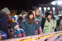 В Туле завершились новогодние гуляния, Фото: 26