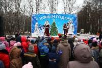 Открытие елки на площади искусств. 19.12.2014, Фото: 46