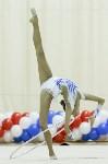 Художественная гимнастика. «Осенний вальс-2015»., Фото: 45