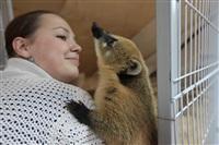 трогательный зоопарк, Фото: 33