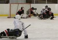 «Матч звезд» по следж-хоккею в Алексине, Фото: 18