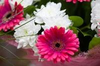 Ассортимент тульских цветочных магазинов. 28.02.2015, Фото: 17