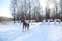 Деревянному лосю у возле Красных ворот сломали рога, Фото: 3