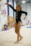 Спортивная гимнастика в Туле 3.12, Фото: 90