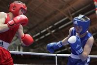XIX Всероссийский турнир по боксу класса «А», Фото: 24