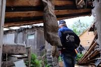 В Плеханово начали сносить дома в цыганском таборе, Фото: 35