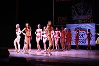 Мисс Тульская область - 2014, Фото: 150