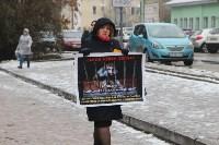 Более 8000 туляков требуют запретить убийство бездомных животных, Фото: 27