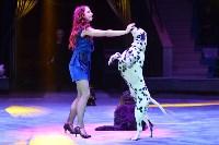 Цирковое шоу, Фото: 47