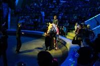 Цирк «Вива, Зорро!» в Туле , Фото: 54