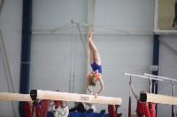 Соревнования по спортивной гимнастике на призы Заслуженных мастеров спорта , Фото: 42