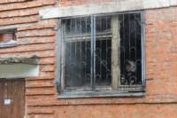 В Скуратово загорелось заброшенное училище, Фото: 11