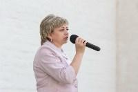 Тульский кремль:засечная черта, Фото: 114