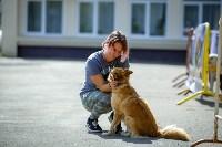 В Центральном парке Тулы проходит фестиваль помощи животным, Фото: 9