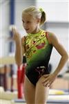 Первый этап Всероссийских соревнований по спортивной гимнастике среди юношей - «Надежды России»., Фото: 43