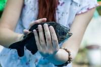 """Рыбка с """"человеческими"""" зубами в тульском экзотариуме, Фото: 5"""