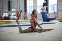 Соревнования по спортивной гимнастике на призы Заслуженных мастеров спорта , Фото: 32