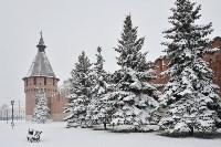Снежная Тула. 15 ноября 2015, Фото: 38