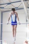 Мужская спортивная гимнастика в Туле, Фото: 10