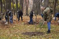 Высадка деревьев в Рогожинском парке, Фото: 9